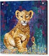 Lion Prince Acrylic Print