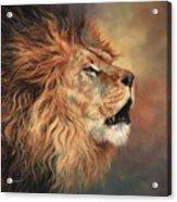 Lion Roar Profile Acrylic Print