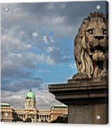 Lion Sculpture In Budapest Acrylic Print
