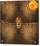 Lion Sun Acrylic Print