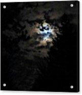 Lisas Wildlife Moons Acrylic Print