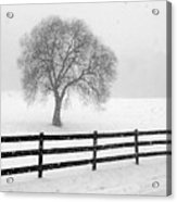 Listen The Snow Is Falling All Around Acrylic Print