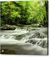 Listening To The Song Of The Stream Acrylic Print