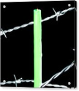 Lit Candle Surrounded By Barbed Wire Acrylic Print