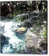 Lithia Springs Acrylic Print