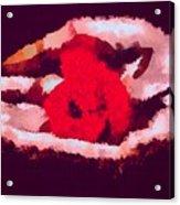 Litt Acrylic Print