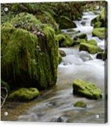Little Creek 5 Acrylic Print