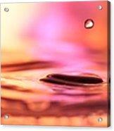 Little Drop Of Water Acrylic Print