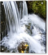 Little Elbow Waterfall Acrylic Print by Thomas R Fletcher