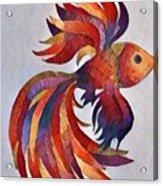 Little Fish Acrylic Print