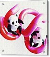 Little Glass Pandas 44 Acrylic Print