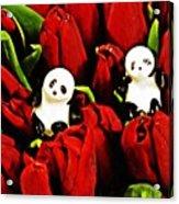 Little Glass Pandas 80 Acrylic Print