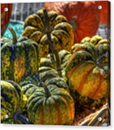 Little Gourds Acrylic Print