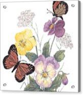 Little Heartsease Acrylic Print