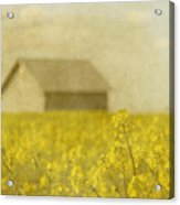 Little House On The Prairie Acrylic Print