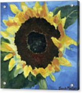 Little Miss Sunshine Acrylic Print