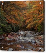 Little Pigeon River In Autumn Acrylic Print