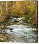 Little Pigeon River In Fall Smoky Mountains National Park Acrylic Print
