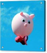 Little Piggy Acrylic Print