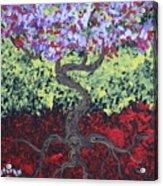 Little Red Tree 2 Acrylic Print
