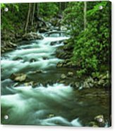 Little River Tremont Area Of Smoky Mountains National Park Acrylic Print