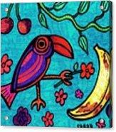 Little Toucan Acrylic Print