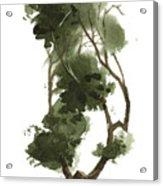 Little Tree 129 Acrylic Print