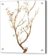 Little Tree 58 Acrylic Print