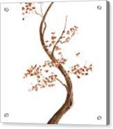 Little Tree 62 Acrylic Print