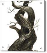 Little Tree 79 Acrylic Print