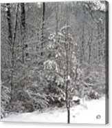 Little Tree Big Snow Acrylic Print