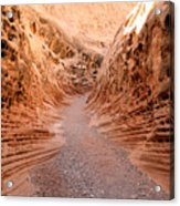 Little Wild Horse Canyon Acrylic Print