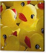 Little Yellow Duckies Acrylic Print