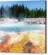 Live Dream Own Yellowstone Park Black Pool Text Acrylic Print