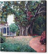 Live Oak Gardens Jefferson Island La Acrylic Print