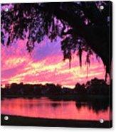 Live Oak Sunset Acrylic Print