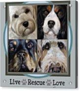 Live Rescue Love Acrylic Print
