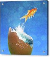 Live Your Dreams Acrylic Print