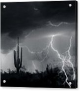 Living In Fear-signed Acrylic Print