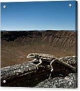 Lizard Crater Acrylic Print