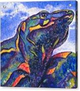 Lizard In The Desert 2 Acrylic Print
