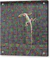 Lizard On A Screen Porch Acrylic Print