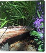 Lizards In The Garden Acrylic Print
