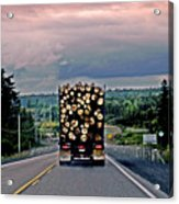 Load Of Logs Acrylic Print
