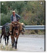 Local Travells By Donkey Acrylic Print