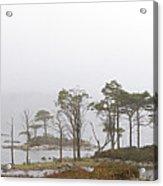 Loch Assynt Acrylic Print