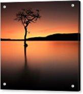 Loch Lomond Afterglow Acrylic Print