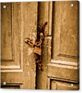 Locked Acrylic Print by Gabriela Insuratelu