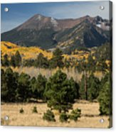 Lockett Meadow Autumn Acrylic Print