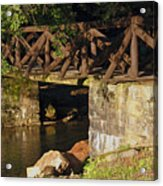 Log Bridge Acrylic Print